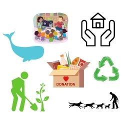 Whale ,homeless people, dogs, trees, recycling